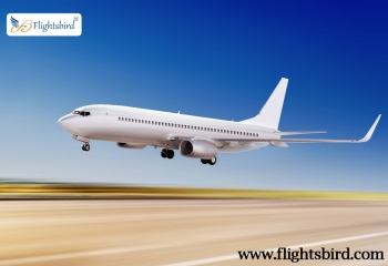 Grab Cheap Air Flights Ticket From SFO to Denver  At Flightsbird.